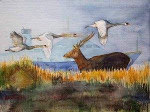 Rendezvous an der Ostsee (c) Aquarell über ein Treffen von Schwänen mit einen Rothirsch von FRank Koebsch